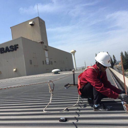 BASF ( Thailand ) Co.,Ltd